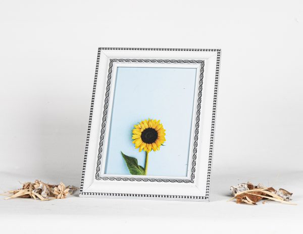 39 Plastic frame